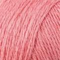 Cotton Cashmere - 214 Coral Spice