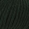 Big Wool - 043 Forest