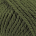 Big Wool - 049 Lichen#