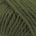 Big Wool - 049 Lichen#