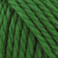 Big Wool - 077 Pine Needle#
