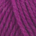 Big Wool - 079 Pantomime