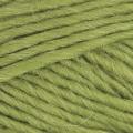 Cocoon - 816 Kiwi#