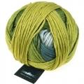 Gradient - 2306 Gelbfilter