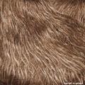 Japonica Beauty - 07 Braun