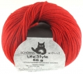 Life Style - 1390 Feuer