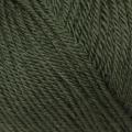 Pure Wool DK - 050 Pine Needle