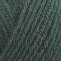 Pure Wool Worsted - 200 Verdant