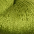 Scrumptious Lace - 521 Key Lime