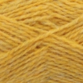 Shetland Spindrift - 1160 Scotch Broom