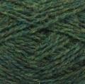Shetland Spindrift - 249 Fern