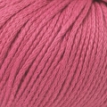 Softknit Cotton - 576 Tea Rose