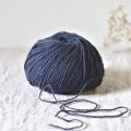 Ulysse - Baleine bleue