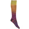 Urth Uneek Sock Kit - 55