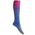 Urth Uneek Sock Kit - 57