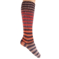 Urth Uneek Sock Kit - 65