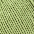 Wool Cotton 4ply - 491 Leaf#