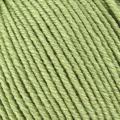 Wool Cotton - 997 Leaf
