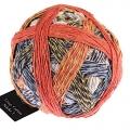 Zauberball Crazy Cotton St. 4 - 2366 Urgestein